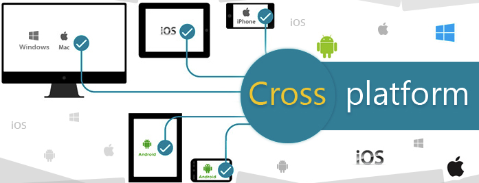 cross platform adaptive websites